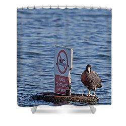 No Swimming Shower Curtain