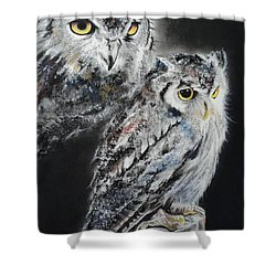 Noble Owl Guardian Of The Afterlife Shower Curtain by Carla Carson