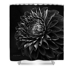 Noir Beauty Shower Curtain