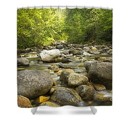 Noisy Creek Shower Curtain