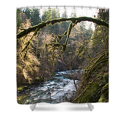 Shower Curtain featuring the photograph Nooksack River by Yulia Kazansky