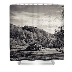 #nordhausen #nokia #lumia1520 Shower Curtain by Mandy Tabatt
