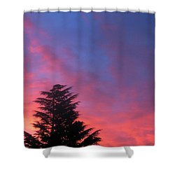 Nordic Shower Curtain