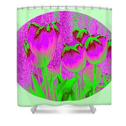 Noric House Tulips Shower Curtain by Will Borden