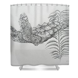 Shower Curtain featuring the drawing Norman by Mayhem Mediums