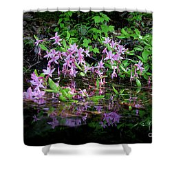 Norris Lake Floral 2 Shower Curtain by Douglas Stucky