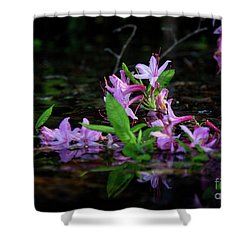 Shower Curtain featuring the photograph Norris Lake Floral by Douglas Stucky