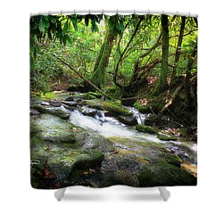 North Georgia Mountains  Shower Curtain
