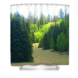 North Rim Landscapes Shower Curtain