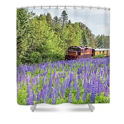 North Shore Scenic Railroad Shower Curtain