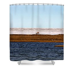North Slope Shower Curtain by Anthony Jones