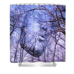 North Wind Shower Curtain by Kathy Bassett