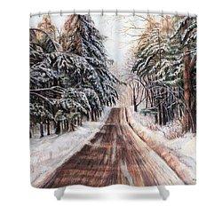 Northeast Winter Shower Curtain