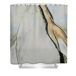 Northern Bliss Shower Curtain by Cori Solomon