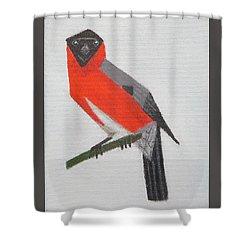 Northern Bullfinch Shower Curtain