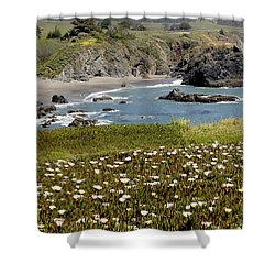 Northern California Coast Scene Shower Curtain by Mick Anderson