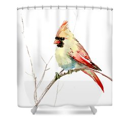 Northern Cardinal,female Shower Curtain