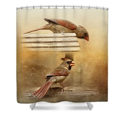 Northern Cardinals At Sunrise Shower Curtain