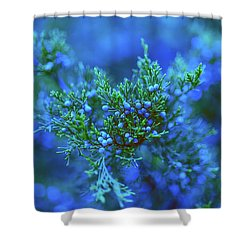 Northern Constellations Shower Curtain