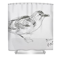 Northern Diving Petrel Shower Curtain