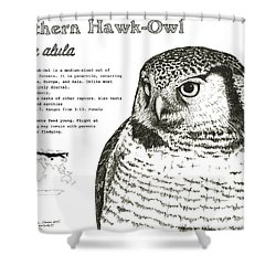 Northern Hawk-owl Infographic Poster Shower Curtain