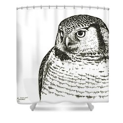 Northern Hawk-owl Shower Curtain