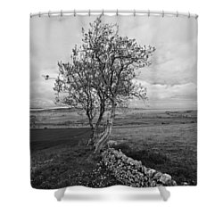 Northern Ireland 19 Shower Curtain