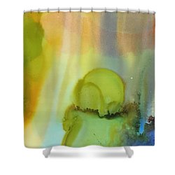 Northern Light # 2 Shower Curtain