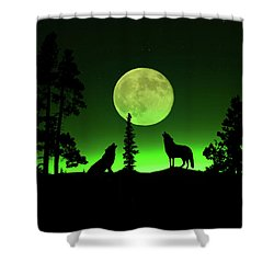 Northern Lights Shower Curtain by Shane Bechler