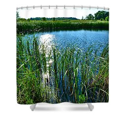 Northern Ontario 2 Shower Curtain by Claire Bull