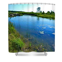 Northern Ontario 3 Shower Curtain by Claire Bull