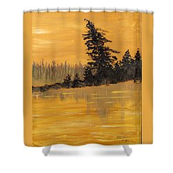 Shower Curtain featuring the painting Northern Ontario Three by Ian  MacDonald
