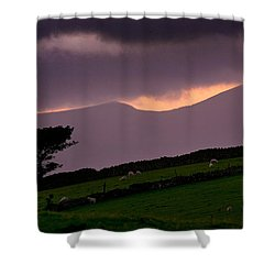 Northern Rhinogs Shower Curtain