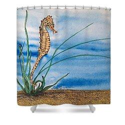 Northern Seahorse Shower Curtain