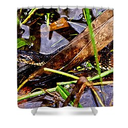 Shower Curtain featuring the mixed media Northern Water Snake by Olga Hamilton
