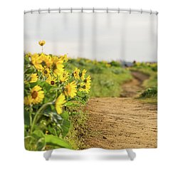 Northwest Balsamroot On Mosier Plateau Shower Curtain
