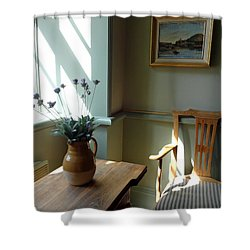 Norwegian Interior #2 Shower Curtain