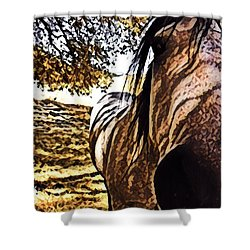 Nosey Belle Shower Curtain