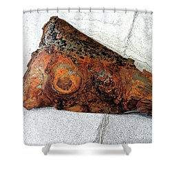 Not A Moth Wing Shower Curtain by Sandra Church