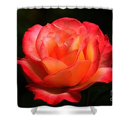 Not A Second Hand Rose Shower Curtain by James Eddy