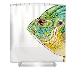 Not In Your Pan Shower Curtain