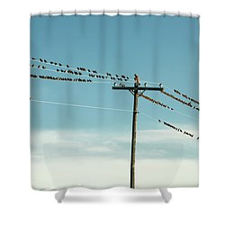 Not Like The Others Shower Curtain
