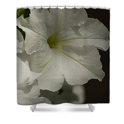 Shower Curtain featuring the photograph Not Perfect But Beautiful by Ramona Whiteaker