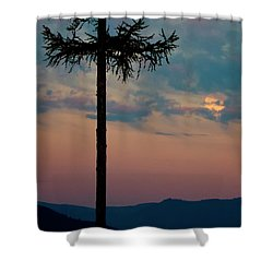 Shower Curtain featuring the photograph Not Quite Clearcut by Albert Seger