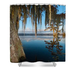 Looking For Lafayette Shower Curtain by Kimo Fernandez