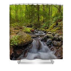 Not-so-dry Creek Shower Curtain by David Gn