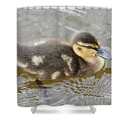 Not So Ugly Duckling Shower Curtain