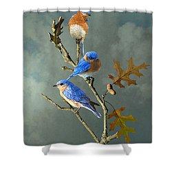 Nothing But Bluebirds Shower Curtain