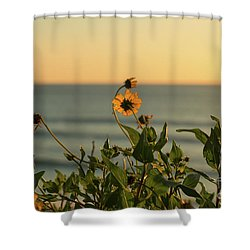 Shower Curtain featuring the photograph Nothing Gold Can Stay by Ana V Ramirez