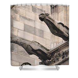 Notre Dame Cathedral Gargoyles Shower Curtain